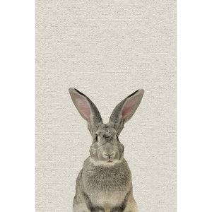 Rabbit Wrapped Canvas Photograph by Vic Schendel Cottontail
