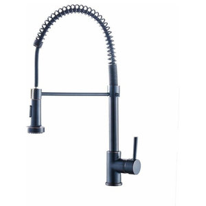 Modern Kitchen Sink Mixer Tap With Pull Out Spray and Swivel-Spring Spout