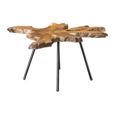 Rustic Modern Live Edge Wood Accent Table Rough Abstract Teak Slab Black Metal