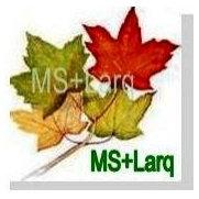 Foto de MS+Larq Landscape Design Build
