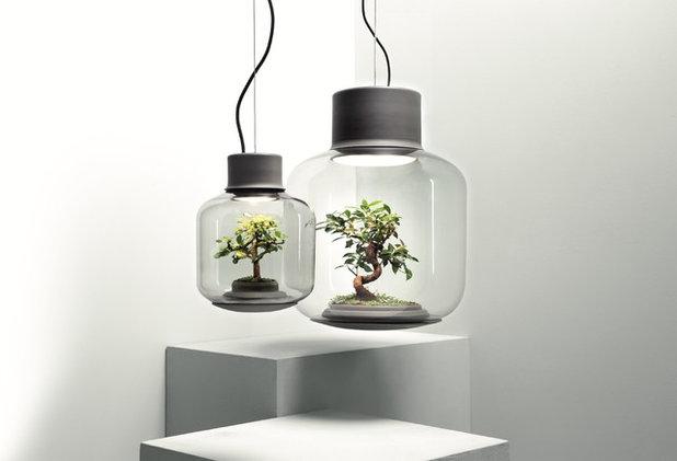 Микротренды: Мода на сад в квартире. Внезапно иной