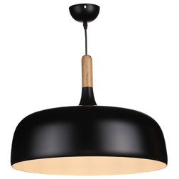 Contemporary Pendant Lighting by Houzz