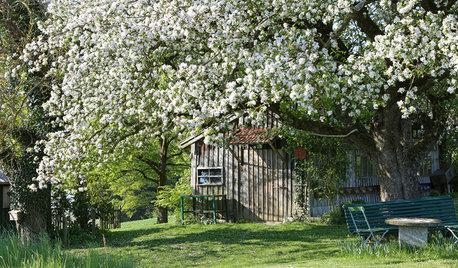 Verlosung: 6 neue Gartenbücher für den Frühling