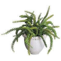 Lifelike Jade Necklace Succulent Arrangement In White Ceramic Planter