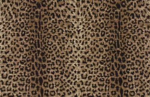 Need Help Coordinating Leopard Print In Powder Room