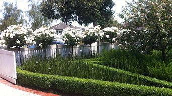 A lush cottage garden