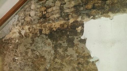 Muri Con Elementi In Pietra