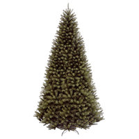 16' North Valley Spruce Tree