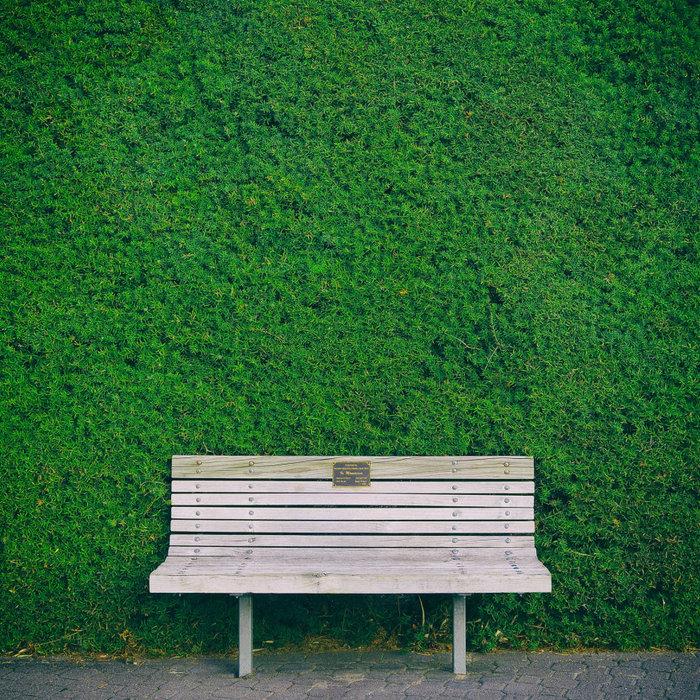 Artificial Green walls