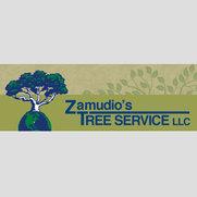 Foto de ZAMUDIO'S TREE SERVICE