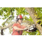 Foto de McKee Tree Service