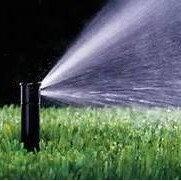 American Yard Service & Irrigation's photo