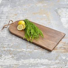 Modern Kitchen Utensils Gadgets modern kitchen tools & gadgets | houzz