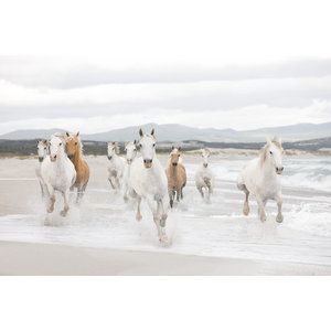 White Horses Beach Photo Wall Mural, 368x254 cm