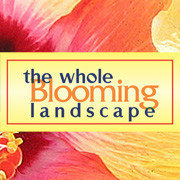 The Whole Blooming Landscape, Inc.'s photo