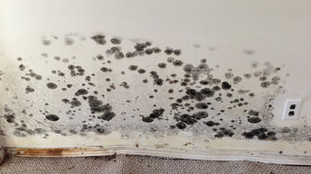 Mold affected house