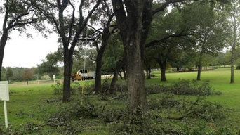 Tree Trimming Austin - Certified Arbor Care (512) 671-8733