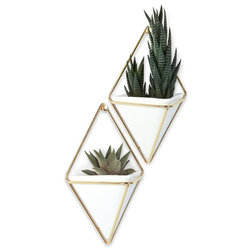 Contemporary Indoor Pots And Planters by Umbra