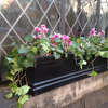 City Gardener: Fun With Winter Window Boxes