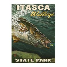 "Paul A. Lanquist Itasca State Park Minnesota Walleye Art Print, 18""x24"""
