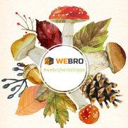 Foto von WeBro Garten- & Landschaftsdesign