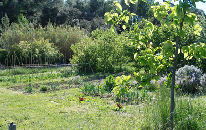 Paysagisme : Cap sur des jardins ornementaux et comestibles !