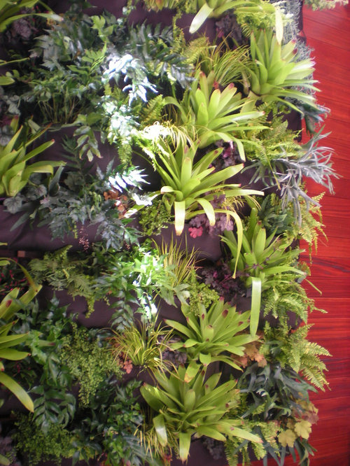 Houzz Indoor Vertical Garden Design Ideas Remodel Pictures