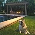Elite Outdoor Living's profile photo