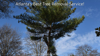 Tree Removal Project in Alpharetta, Georgia