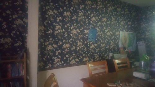 Trying To Paint Over Wallpaper
