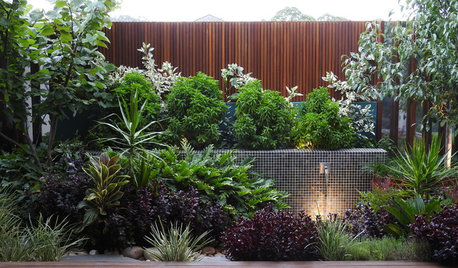 A Small, Drab Courtyard Gets a Dreamy, Subtropical Makeover
