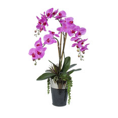 Real Touch Lavender Phalaenopsis Orchid With Succulents, Chrome Top Ceramic Pot