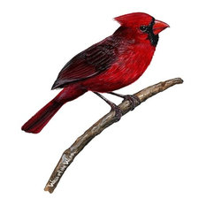 Walls of the Wild - Cardinal Wall Decal - Wall Decals
