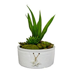 "11"" Succulent in Ceramic Pot With Starfish Ornament 1936"