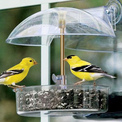 Contemporary Bird Feeders by Brookstone
