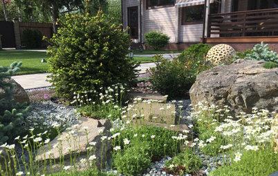 Проект недели: Трёхлетний альпийский сад в Подмосковье