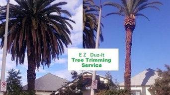 Palm Tree Full Trim