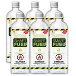 SMARTFUEL - Smartfuel™ Ethanol Fuel for Indoor/Outdoor Ventless Fireplaces, 6 Pack - SMARTFUEL™ Ethanol Fuel for Indoor & Outdoor Ventless Fireplaces - 6 or 12 Liter Pack