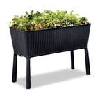 Keter Easy Grow Elevated Resin Rattan Garden Bed, Anthracite