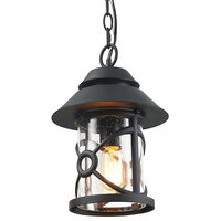1-Light Porch Pendant Light, Hand-Polished Black With Clear Glass