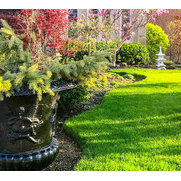 No Limit Lawn Care Inc.'s photo