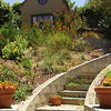 Houzz TV: Curves and Surprises Transform a Dry Backyard