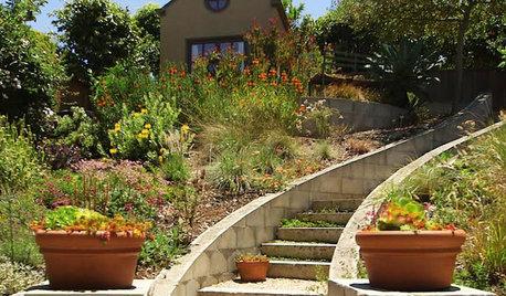 Houzz TV: Curves and Surprises Transform a Dry Backyard