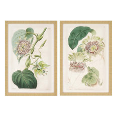 paragon decor antique flowers artwork set of 2 18x26