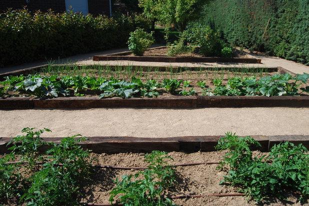 Clásico renovado Jardín by El creador de paisajes