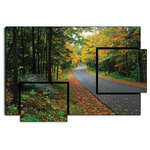 Hashtag Decor - Adirondack Roadtrip, Steve Terrill, Forest Road, Autumn Trees, Print on Wood - Perhaps it's time to take a hike in the breathtaking Adirondack Mountains, as the leaves are changing and the air is getting crisper. This timeless landscape artwork will remind you of which roads to follow. The majestic fall colors are a perfect complement to all your home decor. The asymmetric faux 3-panel design will bring the roads to life on any wall in your home.