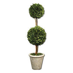 Two Sphere Topiary Preserved Boxwood By Designer Constance Lael-Linyard