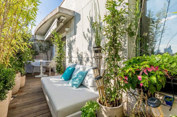 Stile Marinaro  by Herold Design - Groupe Rénovation Parisienne