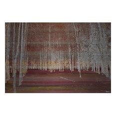 """Night Birch"" UV Ink Print on Brushed  Aluminum, 45""x30"""