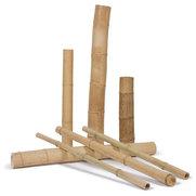 UK Bamboo's photo